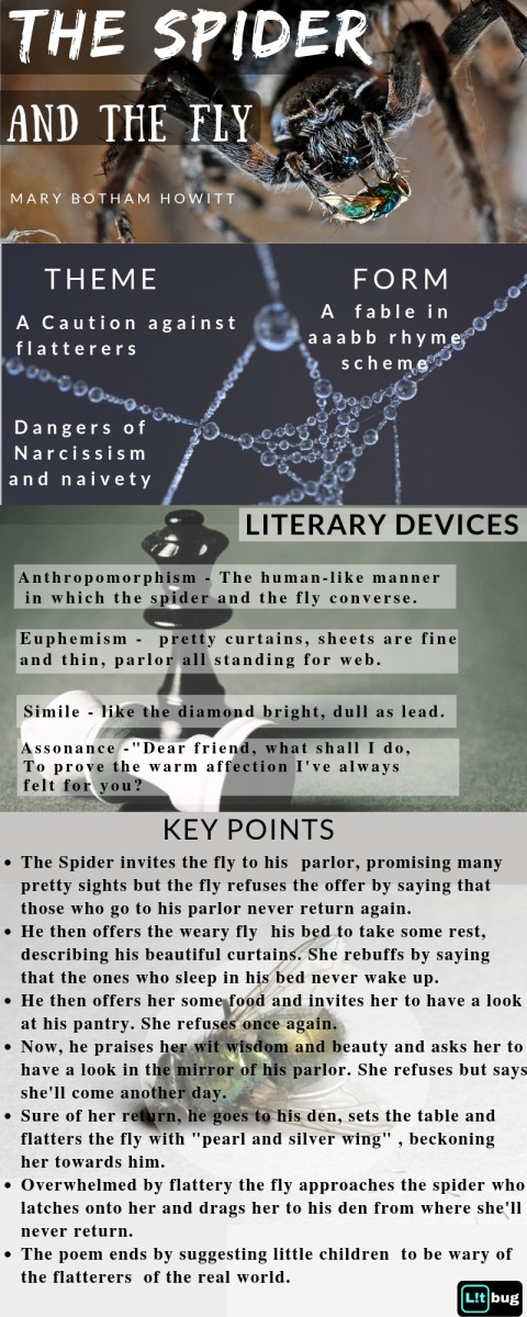 Summary and Analysis of The spider and the fly